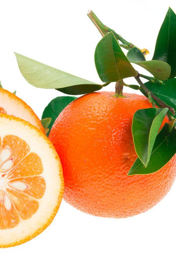 Arancio amaro olio essenziale